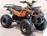 Quad Hummer Panda 125cc,con motor automático de 4 tiempos, marcha atrás,...