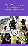 Vom Welpen zum erwachsenen, alltagssicheren Hund: Ein Ratgeber, um den eigenen Hund alltagssicher zu machen