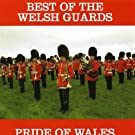 Pride of Wales: Best of the Welsh Guards