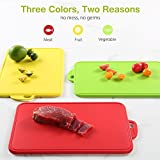 from zanmini Zanmini chopping board set (3pcs), made from food safe polypropylene material, non-slip cutting board in red, yellow and green
