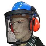 Bauhelm mit Gesichtsschutz und Gehörschutz Kopfschutz Helm Forsthelm Netz blau