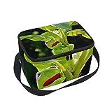 Bolso de almuerzo con diseño de rana, con cremallera, aislante, para picnic, escuela, hombres...