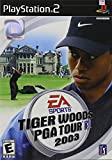 Electronic Arts Tiger Woods PGA Tour 2003, PS2 - Juego (PS2)