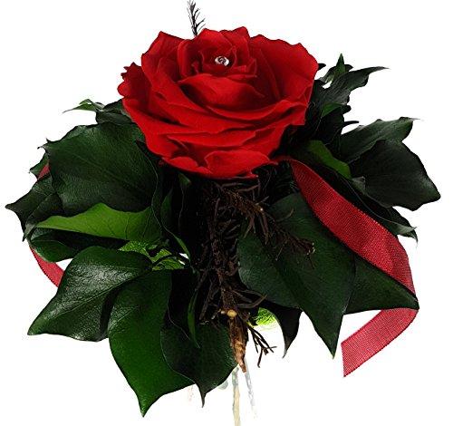 Rosen-te-amo Geschenk für sie Blumen-Strauß aus ECHTE Konservierte Rosen, aus eine haltbare-Rose Exklusives Rosenarrangement - Geschenk für Frau Rosenstrauß