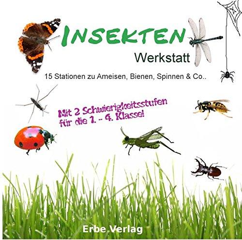 Insekten Werkstatt: 15 Stationen Unterrichtsmaterial Kopiervorlagen Grundschule über Ameisen, Bienen, Wasserläufer und auch Spinnen
