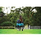 Horseware amigo mio turnout medium couverture de pâturage noir turquoise couette d'hiver schwaz-türkis 145