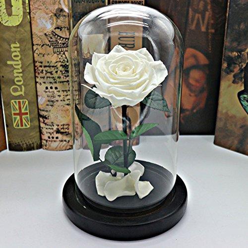 Boîte de cadeau fleur éternelle,Roses Fleurs Ornements de verre Le jour de noël Wedding Anniversaire Décorations de réception-F 6x9inch