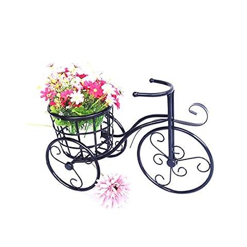 BEITE- Patio Mini Garten Fahrrad Bügeleisen Pflanze Stand für Gartendekoration, Indoor, Outdoor Dekoration ( Farbe : Schwarz )