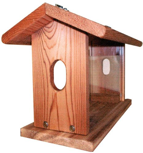 Stovall Bluebird Feeder, Zeder, Cedar|Tan, With Chain Bluebird Feeder