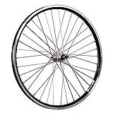 Taylor Wheels 26 pouces roue arrière vélo ZAC2000 5-8 roue libre à vis noir