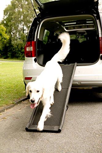 Klapp-Rampe DogMaxx mit Sicherungsgurt - 3