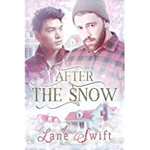 After The Snow (Michigan Seasons Book 2)