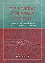 The Shadow that Seeks the Sun: A story about yogis, bhogis, and an unexpected encounter (English Edition)