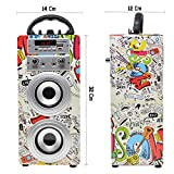 DYNASONIC 025 - Altoparlante Bluetooth con modalità Karaoke 10W | Wireless portatile compatibile con computer, telefoni ecc con 2 Microfoni inclusi | Lettore SD USB e lettore Mp3, Radio FM (Modello 2)
