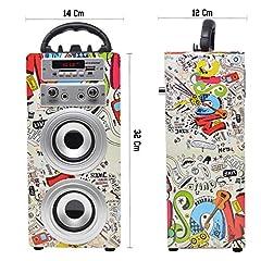Idea Regalo - DYNASONIC 025 - Altoparlante Bluetooth con modalità Karaoke 10W | Wireless portatile compatibile con computer, telefoni ecc con 2 Microfoni inclusi | Lettore SD USB e lettore Mp3, Radio FM (Modello 2)