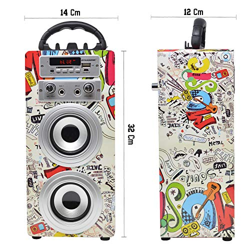 DYNASONIC Altavoces Bluetooth Karaoke Modelo 025 (Modelo 2, 2 Micros)