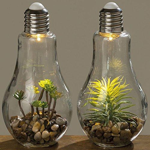 2er Set LED Retro Glühbirne mit Pflanze dickes Glas Kies Deko schaltbar zum stellen