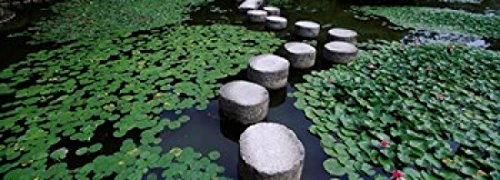 panoramic-images-water-lilies-in-a-pond-helan-shrine-kyoto-japan-photo-print-9144-x-3302-cm