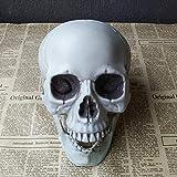 Doolland Réplique Taille Réelle Réaliste Humaine Tête De Crâne Modèle Os, Statue Humaine De Crâne Moule Maison (1pcs,15x15x22cm)