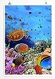 Sinus Art Kunst und Deko Poster - Digitale Grafik – Bunte Unterwasserwelt- Fotodruck in gestochen scharfer Qualität