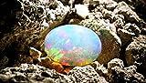 Glimmer-Optik Effektlasur Schöner Wohnen Opal 1 l Vergleich
