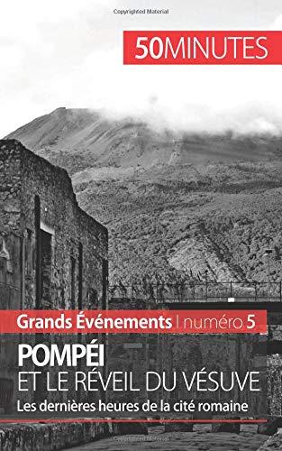 Pompéi et le réveil du Vésuve: Les dernières heures de la cité romaine par Mélanie Mettra