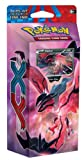Pokemon Xy Cards Review and Comparison