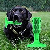 Prevently Hunde Snackknochen mit Zahnpflege-Funktion Dauerhaftes Kauspielzeug für Hunde Kauspielzeug Hundespielzeug aus Naturkautschuk (Grün)