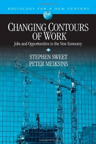 Changing Contours of Work: Jobs and Opportunities in the New Economy (Sociology for a New Century Series) by Stephen A. Sweet (2007-11-28)