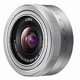 Panasonic Lumix H-FS12032E-S 12-32mm Objektiv für G-Serie Kamera (MEGA O.I.S Bildstabilisator, 2 asphärische Linsen) silber