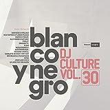 Blanco Y Negro Dj Culture Vol.30 - Best Reviews Guide