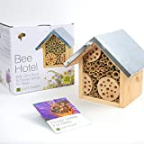 Bee Hotel and Flower Seeds for Bees