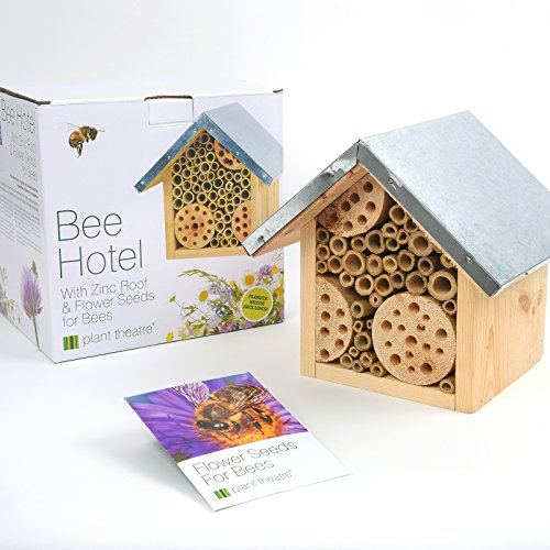Bee Hotel & Flower Seeds for Bees by Plant Theatre - Excellent Gift Idea Test