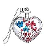 Sunnywill Frauen Trocknen Blume Herz Glas wünschen Flasche Anhänger Halskette für Mädchen Damen (G)