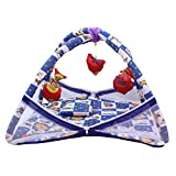 DearJoy Baby Kick and Play Gym with Mosquito Net (Blue Colour with Flower Print)