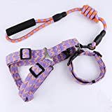 PET Tierbedarf Gemusterte Leinen Hundehalsbänder Brustgespannte Leinen Für Großer Hund - Dreiteiliges Set,Purple