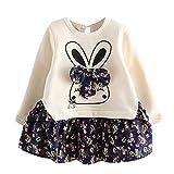 Heligen_Baby Kleidung Kleinkind Kinder Baby mädchen Cartoon Kaninchen O-Hals Bunny Floral Prinzessin Knielang Party Kleidung Strickkleid mädchen