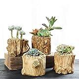 raiz ceramica diseño simple planta suculenta en maceta / maceta de cactus / jardinera / jardinera / sembradora 4 macetas calibre 6-7.5 cm