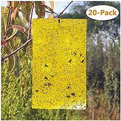 Symbol, 20 Stück, selbstklebend, gelb, doppelseitig, Papier, selbstklebend, für fliegende Insekten, Fliegen, weiße Fliegen