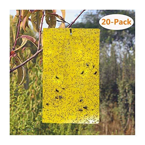 ZREAL 20pcs klebrige Fallen Giallo doppio seitiger di carta adesivi per insetti volanti cimici Volo Bianco Mosche