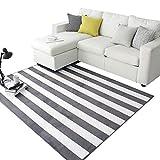 Good carpet Moderner minimalistischer nordischer Art Grauer Schwarzweiss-gestreifter Teppich, Wohnzimmersofa-Kaffeetischschlafzimmer-Bettkopf waschbare Matte