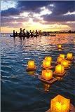 Posterlounge Forex-Platte 100 x 150 cm: Laternenschwimmfest in Hawaii von Douglas Peebles/Danita Delimont