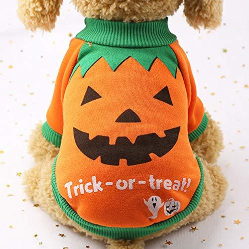 HAWPPWY Halloween Kostüm Party waschbar Unisex Print Halloween Rundhalsausschnitt Heimtierbedarf weicher Hund Kürbis Anzug Baumwollmischung Kleidung atmungsaktiv, orange, XXL -