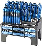 AGT Schraubenzieher: 101-teiliges Schraubendreher- und Bit-Set mit Wandhalterung (Schraubenzieher Set)
