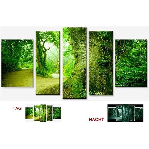 Cuadro en Lienzo Arboles en el Bosque Startonight 90x170 cm Cuadros Modernos Enmarcado y listo para