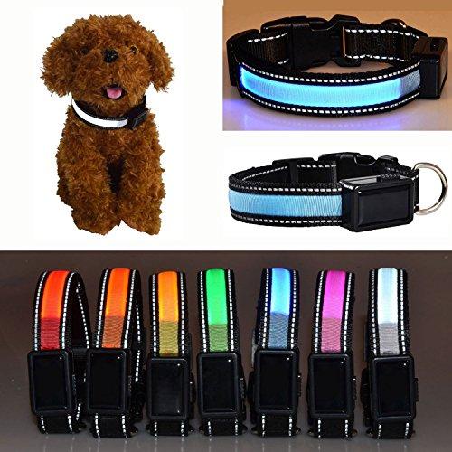 Aution House USB Ricaricabile Collare Riflettente Luci Lampeggianti LED Animali di Sicurezza del Cane, Impermeabile, Misura per Piccolo Medio Grande Cane di Animali Domestici (L 50-60CM, BLU)