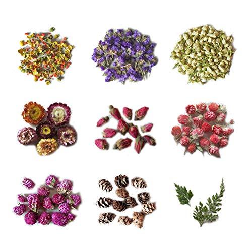 Healifty Blumenknospentrockenblumen für die DIY Kerzenseife, welche die Handwerkshochzeitsdekorationen Machen Geschenk Macht -