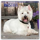 West Highland White Terriers - Westies 2018 - 18-Monatskalender mit freier DogDays-App: Original BrownTrout-Kalender [Mehrsprachig] [Kalender] (Wall-Kalender)