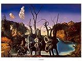 Kunstdruck/Poster: Salvador Dalí Schwäne spiegeln Elefanten 1937