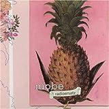 Songtexte von Niobe - Radioersatz